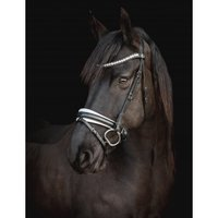 PRE-order! SD Design -  CROWN MYSTERY BRIDLE Glitter Lak