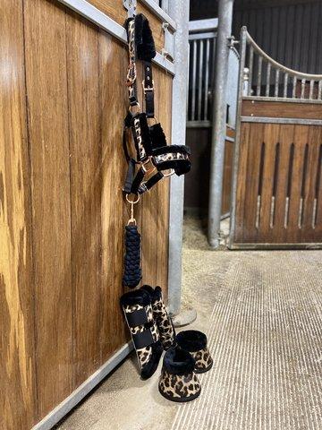 NIEUW! Leopard complete set (beenschermers, springschoenen & halsterset)