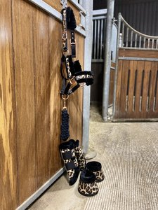 PRE-ORDER! Leopard complete set (beenschermers, springschoenen & halsterset)