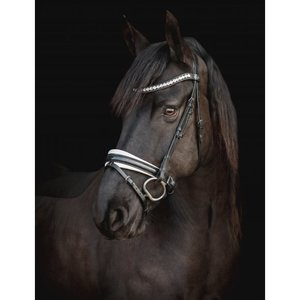 SD Design -  CROWN MYSTERY BRIDLE Glitter Lak